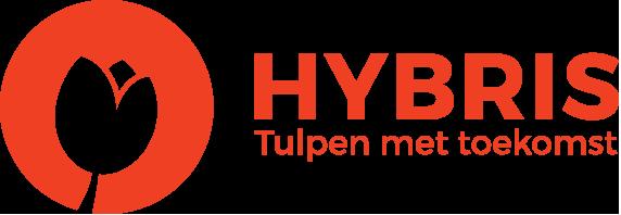 Logo Hybris